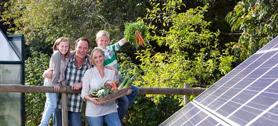 Happy family with basket of vegetables standing near large solar panels