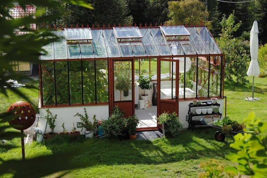 Greenhouse Summer
