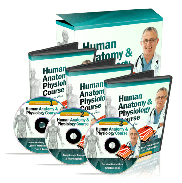 Human Anatomy and Physiology Course DVDs