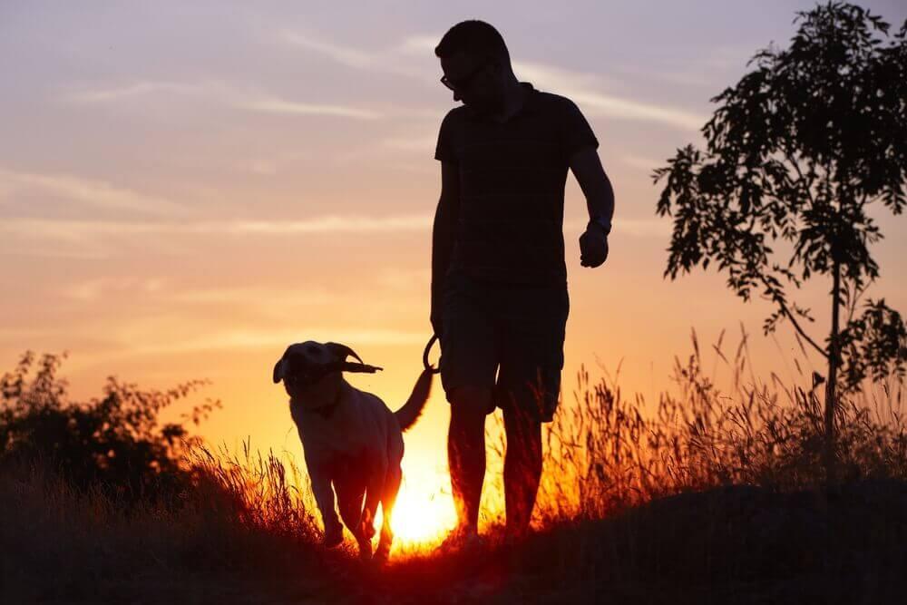Young man with his yellow labrador retriever