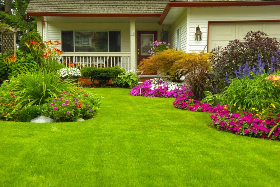 perennial gardens in full bloom.